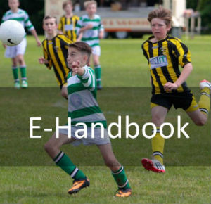 E-Handbook website front cover 2014-15